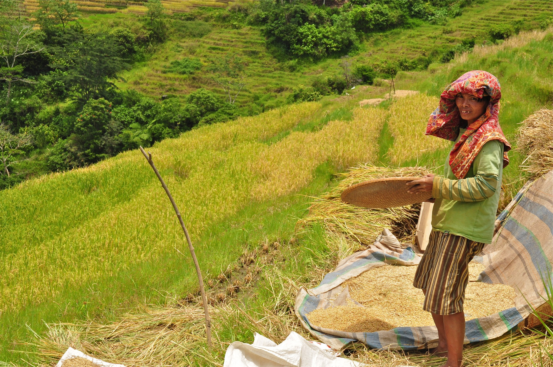 Mahasiswa Teknik Lingkungan, Mari Terjun Membangun Desa dengan Program Holistik Pembinaan  dan Pemberdayaan Desa (PHP2D)